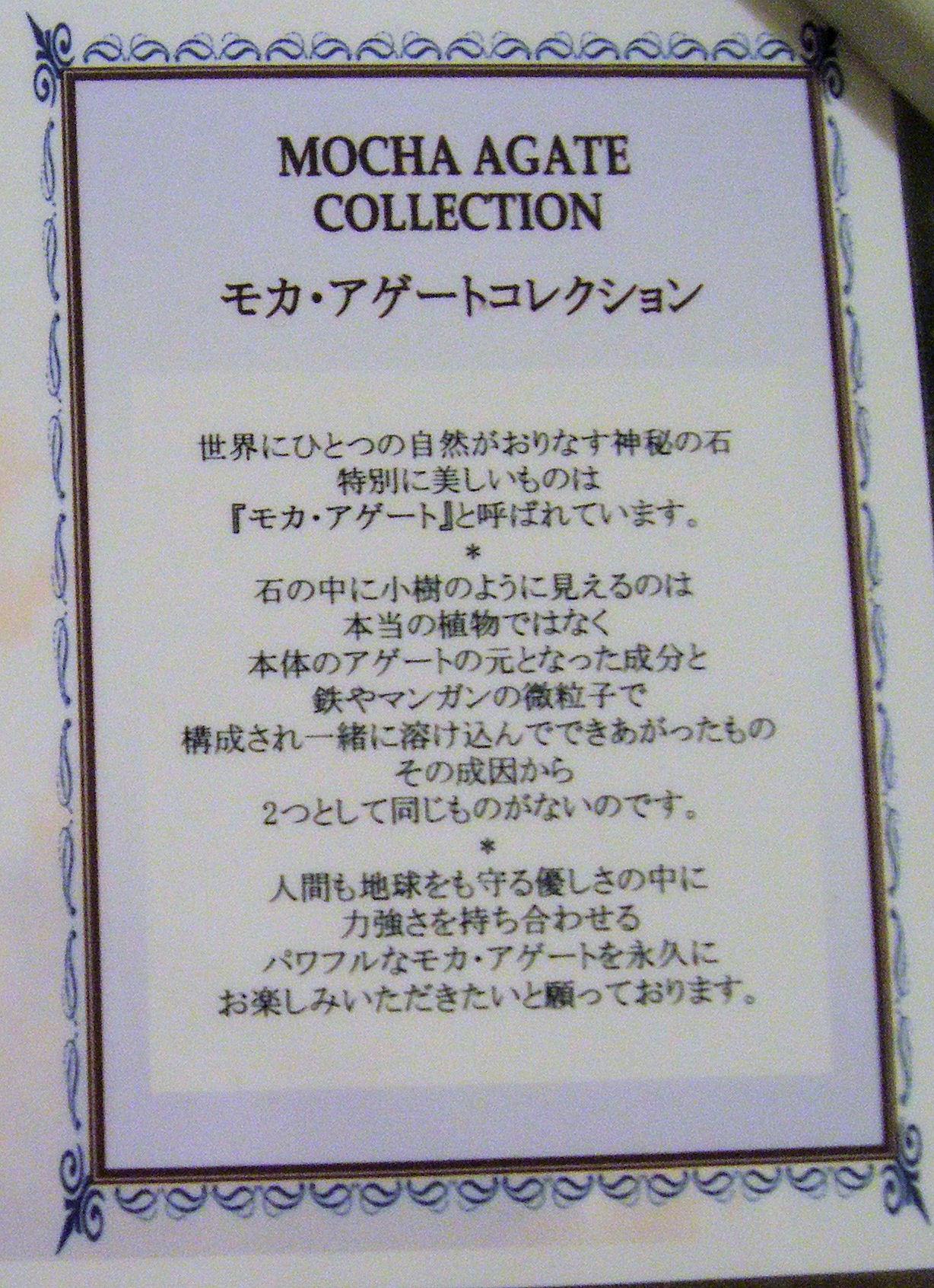 2010_1128taiken0008.JPG